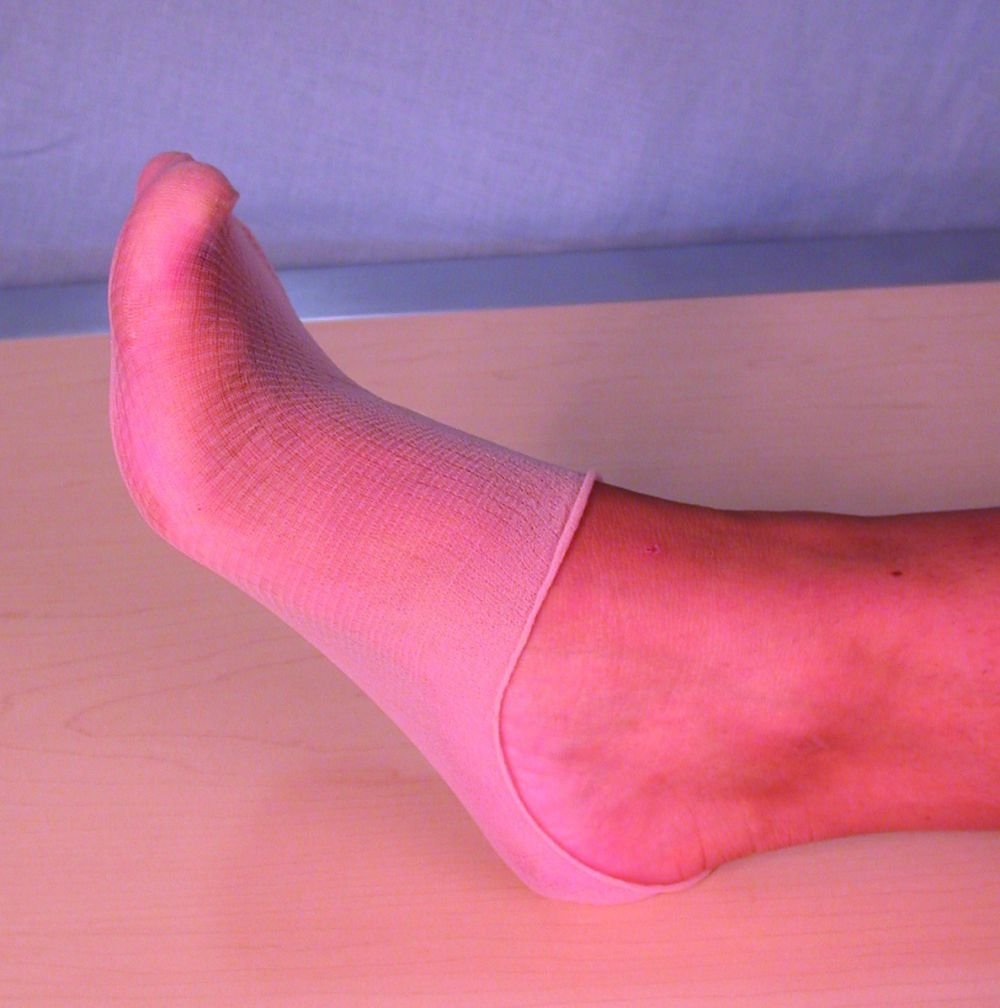 Nylon Foot Try Ons